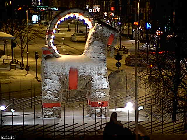 Gavle Goat image from the webcam