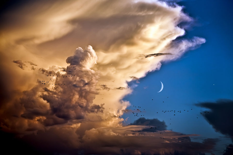 Clouds, Birds, Moon, Venus